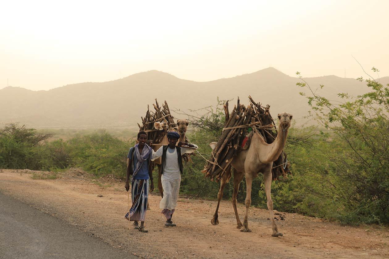 gindai_tour-eritrea_5