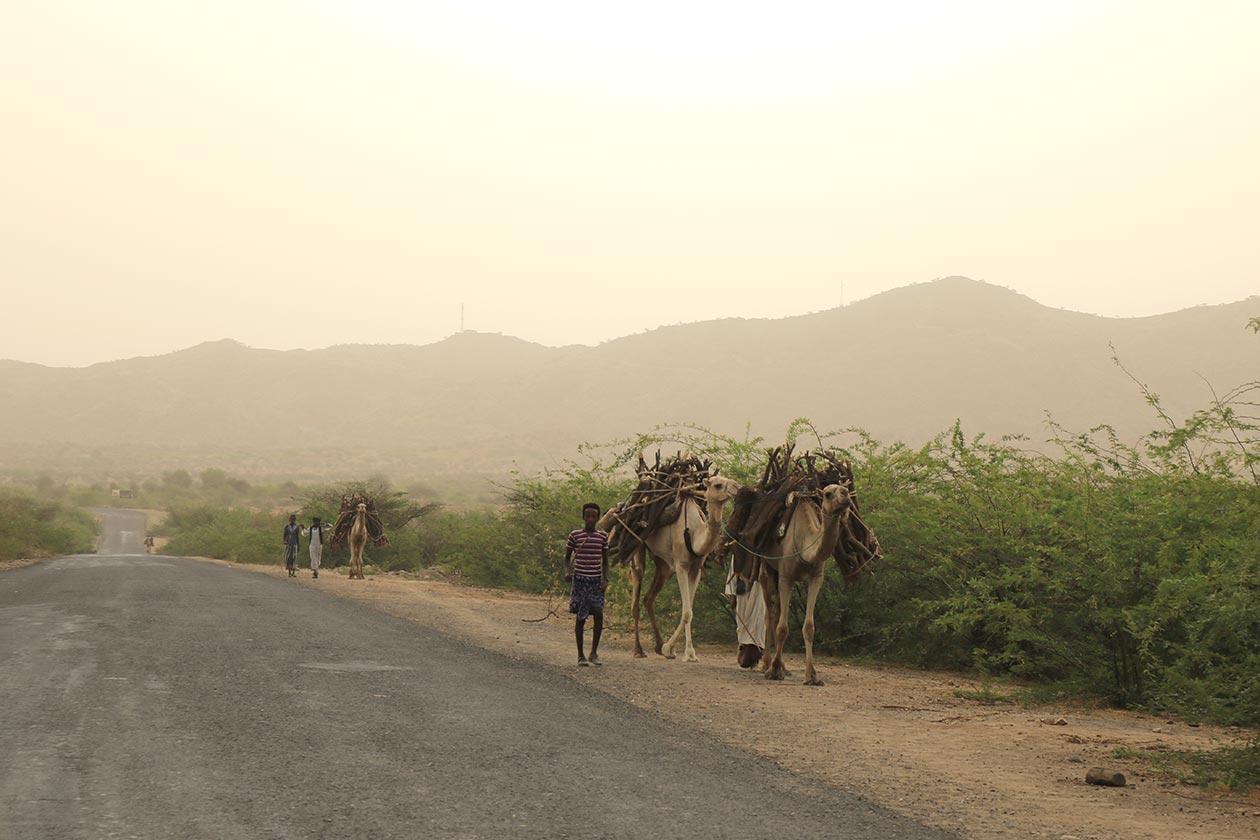 gindai_tour-eritrea_6