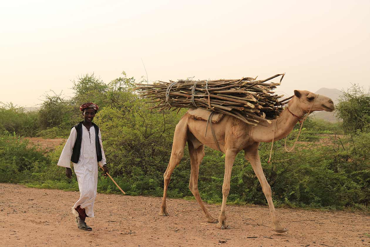 gindai_tour-eritrea_7
